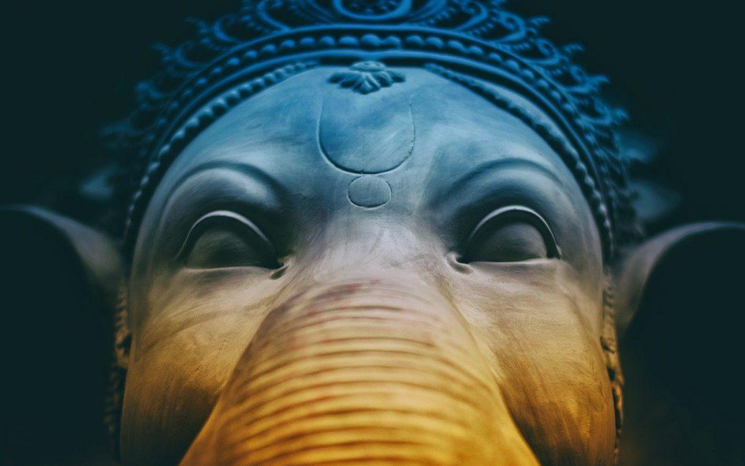 Der Elefant im Porzellanladen